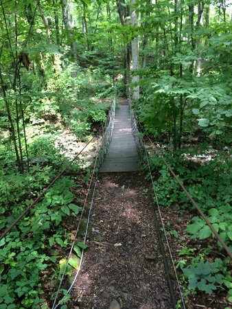 Raccoon Mountain RV Park and Campground : The bridge to no where