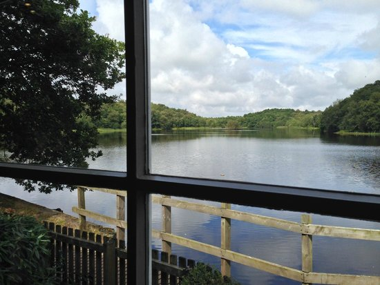 Boathouse Restaurant at Bracebridge: The view from the window