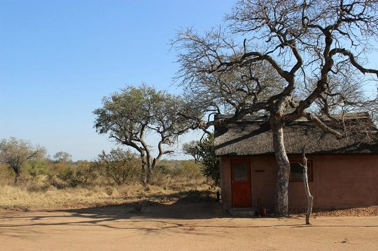 Africa on Foot Camp: Africa on Foot accommodation