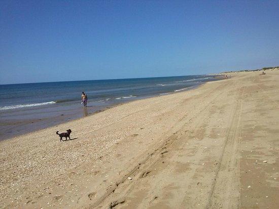 Hotel Fuerte el Rompido: Playa un domingo de agosto