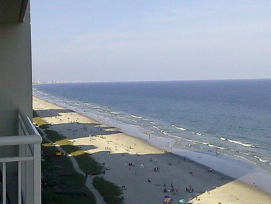 Carolinian Beach Resort : Overlooking the beach