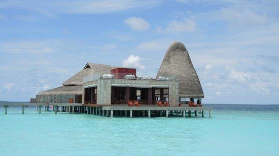 Anantara Kihavah Maldives Villas : bar and restaurant