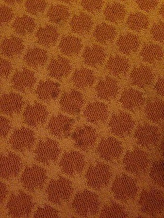 Comfort Inn & Suites Cordele: Stains on the carpet