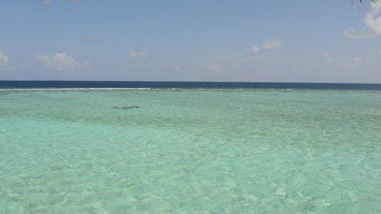 Anantara Kihavah Maldives Villas : view from the villa