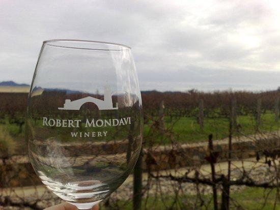 Robert Mondavi Winery: Los viñedos de Mondavi son pioneros en la región