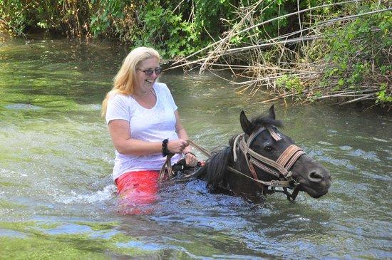 Pinar Horse Safari: loved it