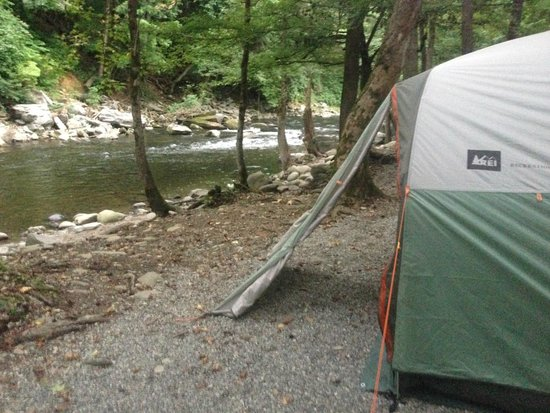 Townsend / Great Smokies KOA: Tent Site along the river