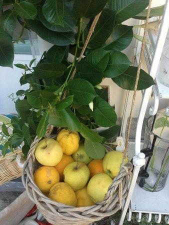 Casa e Bottega: fresh apples