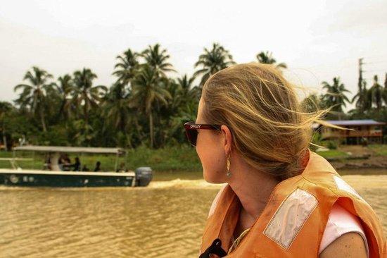 Bilit Rainforest Lodge : river cruise