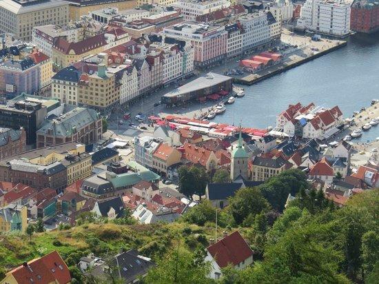 Mount Floyen and the Funicular (Floibanen): Vista de Bergen