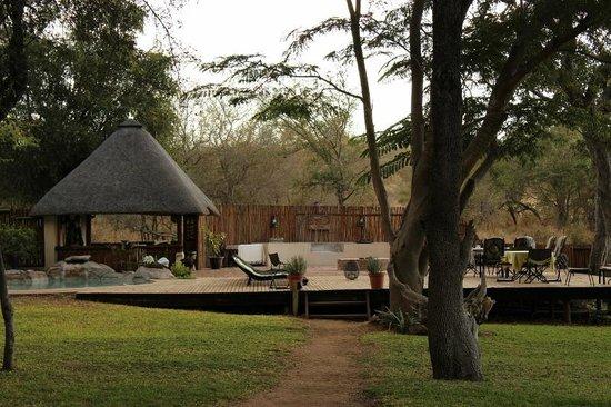 nDzuti Safari Camp : nDzuti deck and pool area