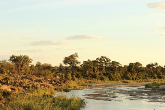 Wildlife Encounters- nDzuti Safari Camp : Sunset over the Klaserie River