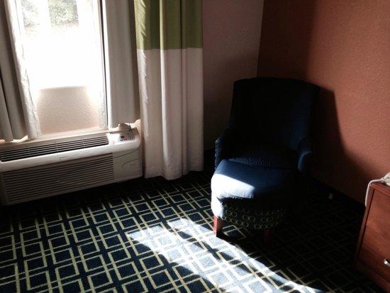 Fairfield Inn & Suites Nashville at Opryland: Bright carpet