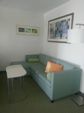 SpringHill Suites Detroit Auburn Hills : Sitting Area, Couch Sofa Sleeper