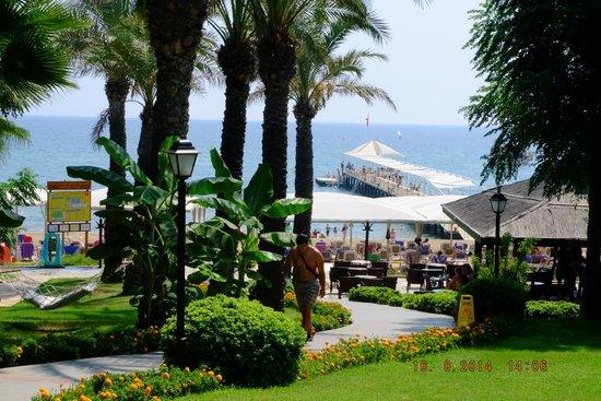 Alva Donna Beach Resort Comfort: beach