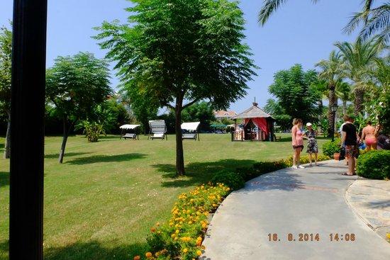 Alva Donna Beach Resort Comfort: grounds