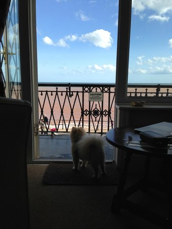 The Bedford Hotel: looking out to sea