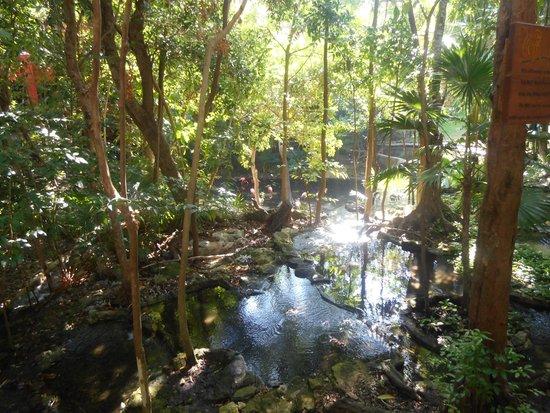 Iberostar Quetzal Playacar: Une partie du parc de l'Hôtel