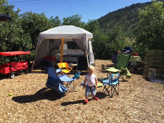 Yogi Bear's Jellystone Camp-Resort at Larkspur Colorado : Site 25. No hookup.