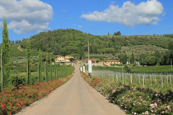 Villa Cilnia: Drive up to hotel