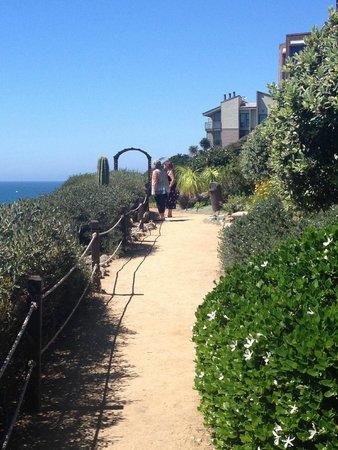 Srf Gardens Picture Of Self Realization Fellowship Hermitage Meditation Gardens Encinitas