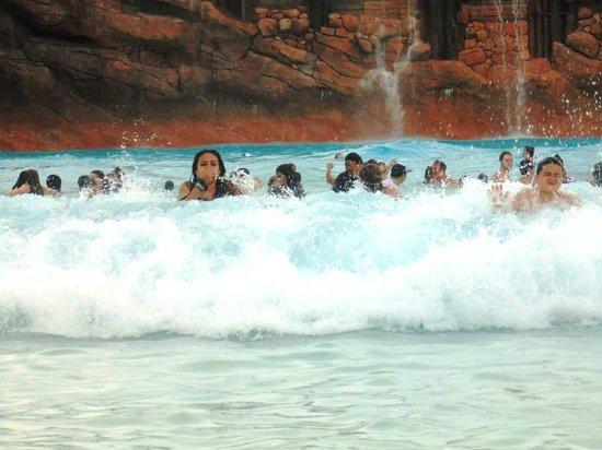 Disney's Typhoon Lagoon Water Park: Olas