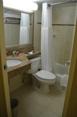 Radisson Hotel Reagan National Airport : Business Class Bathroom