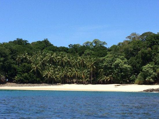 Hotel Bocas del Mar: Beach isla bolaños