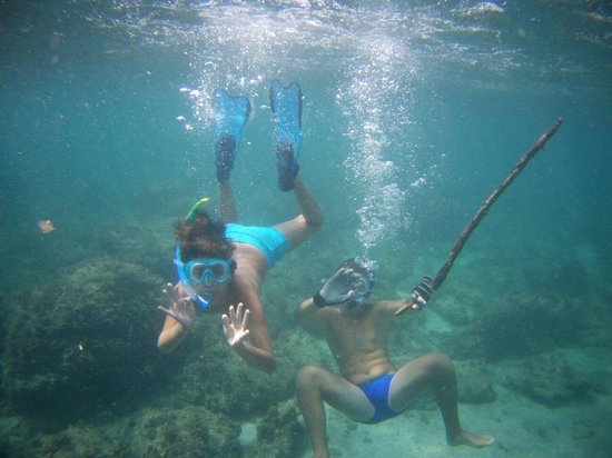 Bay of Silence: apnea
