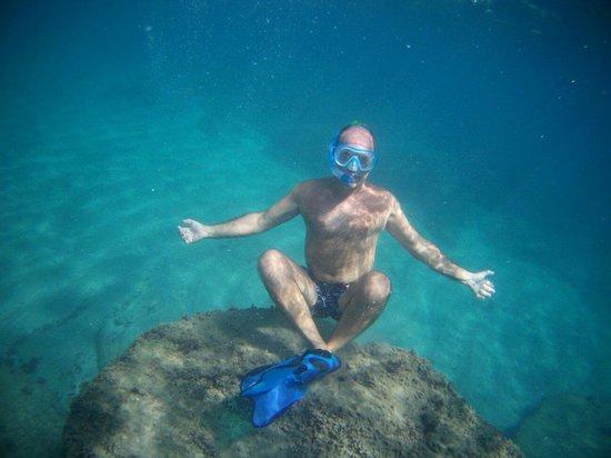 Bay of Silence: fondo della baia