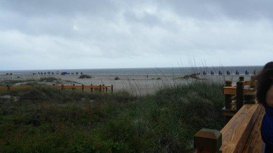 Marriott's Barony Beach Club: Beach at resort