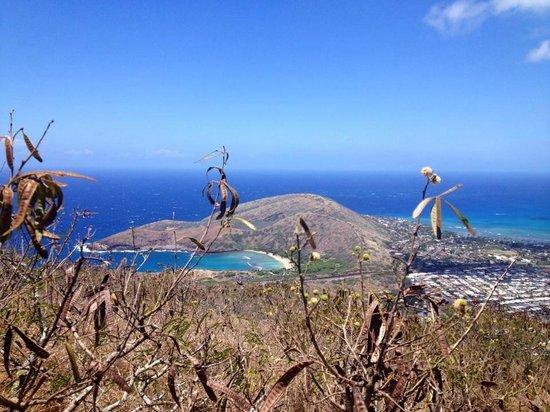 Koko Crater Railway Trail: #WORTHIT
