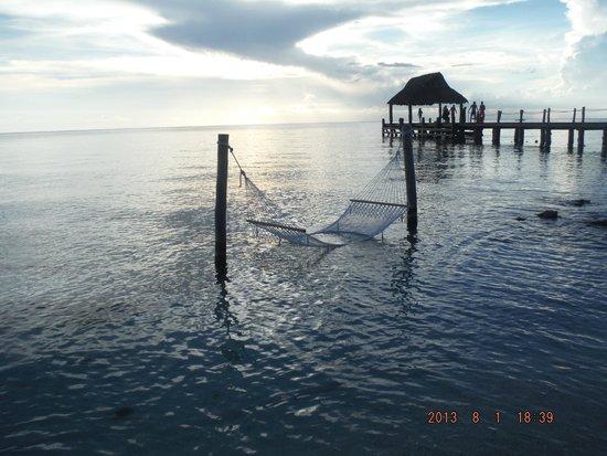 Secrets Aura Cozumel: hammok in the water