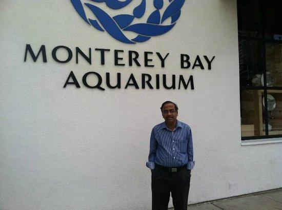 WVR at Monterey Bay Aquarium