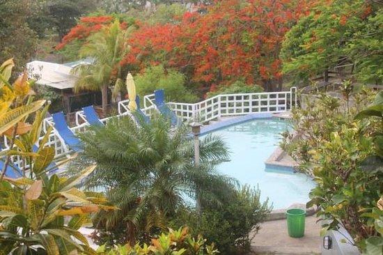 Sugarapple Inn: Pool