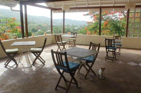 Sugarapple Inn: Dining area