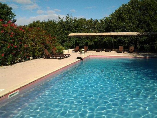 Domaine Le Bois Des Dames : un matin à la piscine