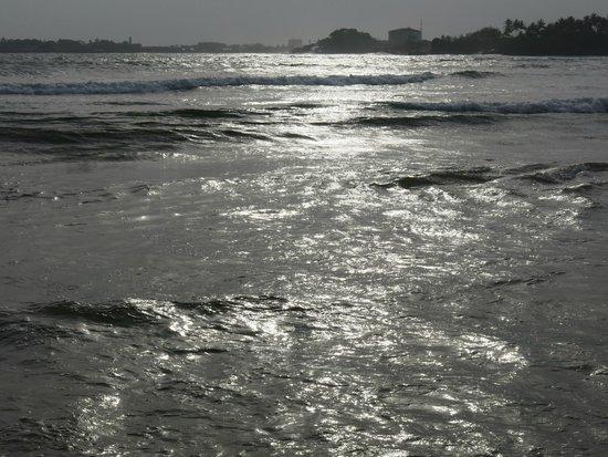 CoCo Bay Unawatuna: Bucht
