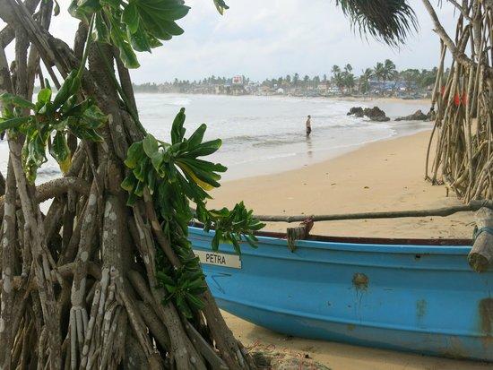 CoCo Bay Unawatuna: Strand