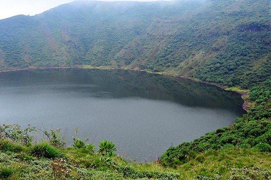 Virunga Lodge: Bisoke Volcano treck