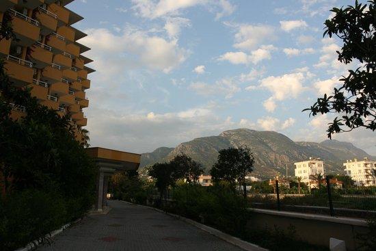 Hotel Sunshine: bok hotelu