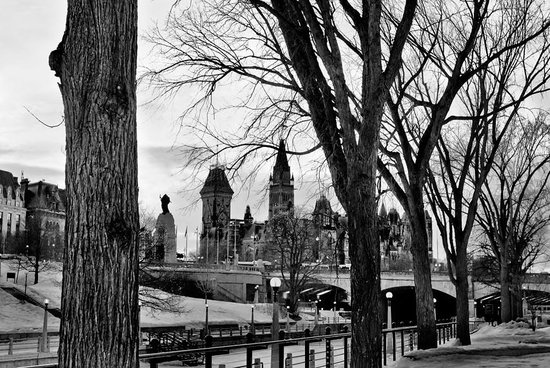 Rideau Canal: Parliament Hill in the background of a frozen canal
