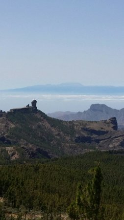 eo Suite Hotel Jardin Dorado: Hire a car and drive up to the highest point in gran canaria. 2000ft with the most spectacular s