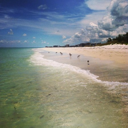 Lido Beach : Picture Perfect!!
