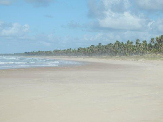 Sauipe Resorts: Praia!!