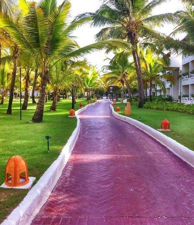 Occidental Grand Punta Cana walking around