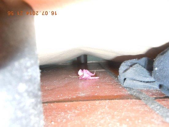 Grand Yazici Club Marmaris Palace: под кроватью обнаружились чьи-то грязные забытые носки