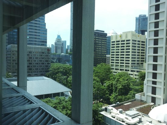 Pan Pacific Orchard: view