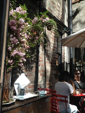 Buvette Gastrotheque: Outside, rear terrace.