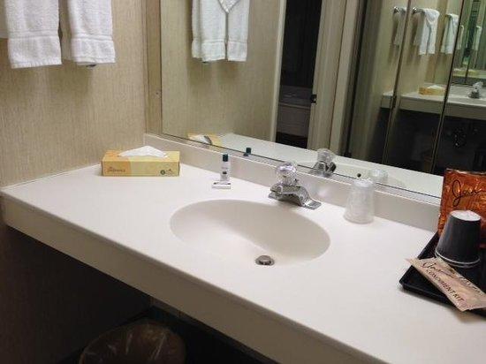 Island Motor Inn Resort: 2 sinks, good!
